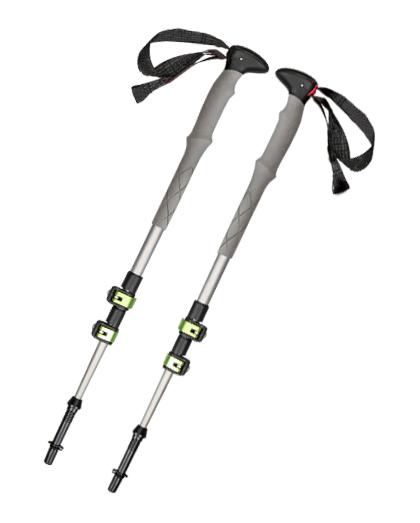 Ein kurzer Vortrag über den Nordic Walking Stick