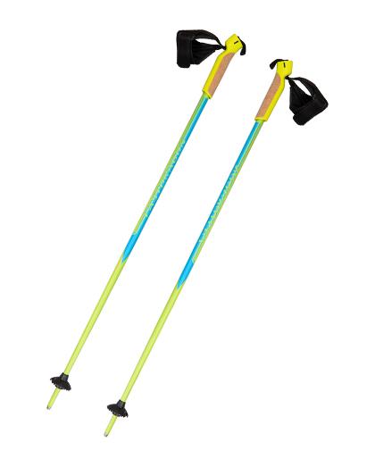 Eastdragon sagt Ihnen, welche Arten von Skistöcken es gibt